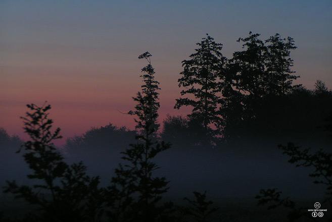 아침 박명_여명부터 일출 전까지 하늘이 점점 밝아지는 상태를 박명이라 한다. <출처: (CC)Wuhazet at Wikipedia.org>